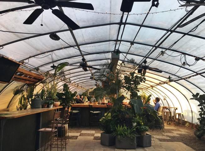 The Greenhouse Bar