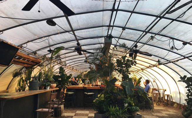 The Greenhouse Bar