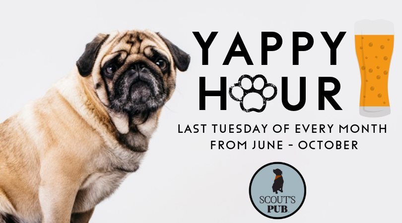Yappy Hour at Scout's Pub